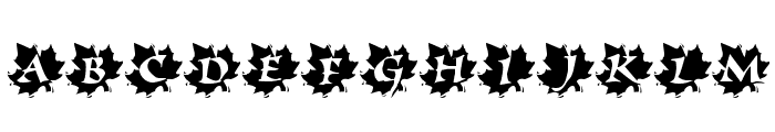 Maple Leaf Rag Font LOWERCASE