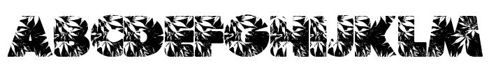Marijuana Font UPPERCASE