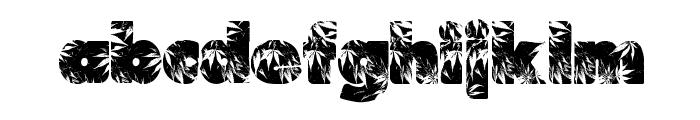 Marijuana Font LOWERCASE