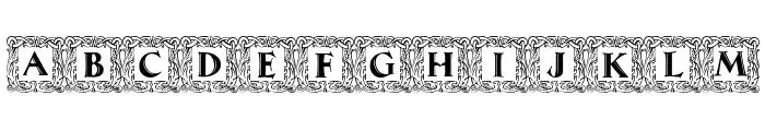 Maximilian Antiqua Initialen Regular Font LOWERCASE