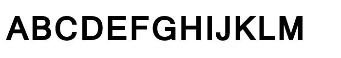Mangal Bold Font UPPERCASE