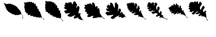 Maple Oaks UL Font OTHER CHARS