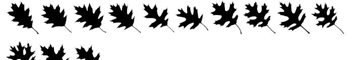 Maple Oaks UL Font UPPERCASE