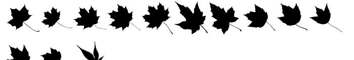 Maple Oaks UL Font LOWERCASE