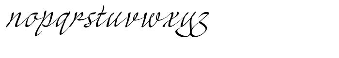 Mayence Premium Font LOWERCASE