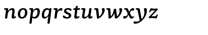 Mayonez Italic Font LOWERCASE