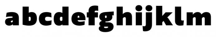 Maiden Black Font LOWERCASE