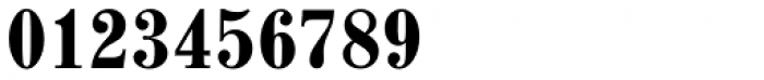Madison Antiqua Pro Condensed Bold Font OTHER CHARS