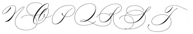 Madison Street Swash Font UPPERCASE