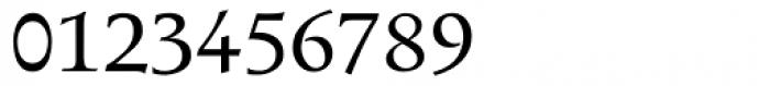 Magellan-Swash Font OTHER CHARS
