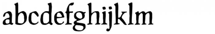 Manuskript Antiqua D Regular Font LOWERCASE