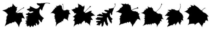 MapleOaks DL Font OTHER CHARS
