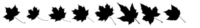 MapleOaks UL Font LOWERCASE