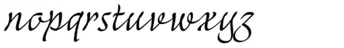 Mayence Text Font LOWERCASE