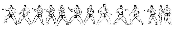 McCoy Dingbat Karate Font UPPERCASE