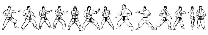 McCoy Dingbat Karate Font LOWERCASE
