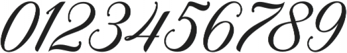 Meighan Script Regular otf (400) Font OTHER CHARS