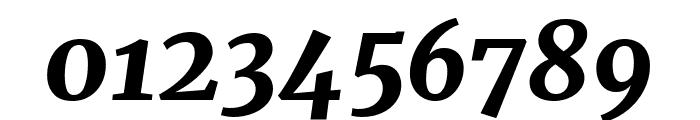 Merriweather Black Italic Font OTHER CHARS