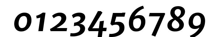 Merriweather Sans Bold Italic Font OTHER CHARS