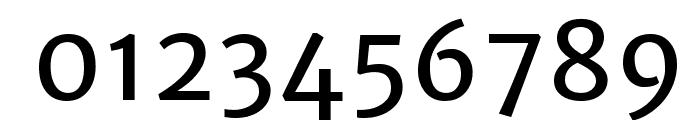 Merriweather Sans Regular Font OTHER CHARS