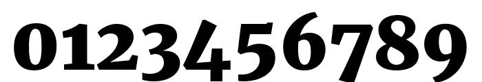 Merriweather UltraBold Font OTHER CHARS