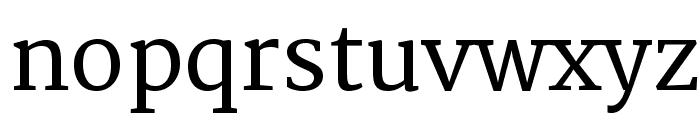 Merriweather Font LOWERCASE