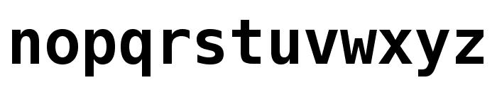 Meslo LG L DZ Bold Font LOWERCASE