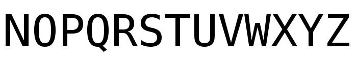 Meslo LG L DZ Regular Font UPPERCASE