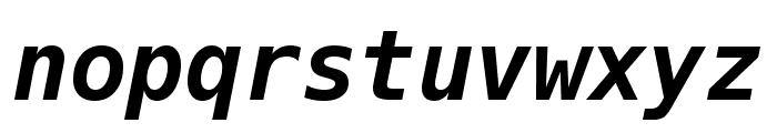 Meslo LG M DZ Bold Italic Font LOWERCASE
