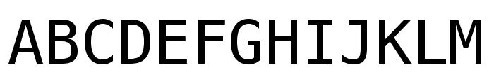 Meslo LG M DZ Regular Font UPPERCASE