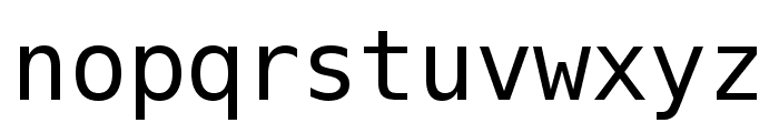 Meslo LG S DZ Regular Font LOWERCASE
