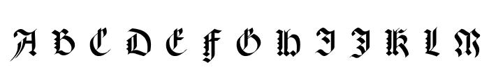 Meyne Textur UNZ1A Italic Font UPPERCASE