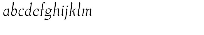 Meister Antiqua Book Italic Font LOWERCASE