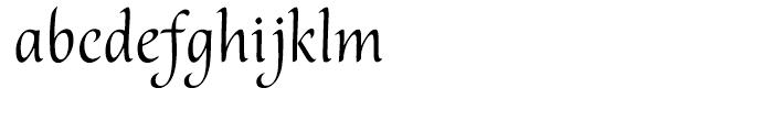 Melody Regular Font LOWERCASE