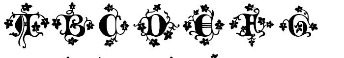 Merona Regular Font UPPERCASE