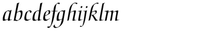 Medici Script Font LOWERCASE