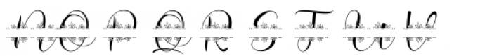 Megan Nice Monogram Font LOWERCASE