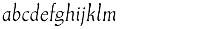 Meister Antiqua Book Italic Font LOWERCASE