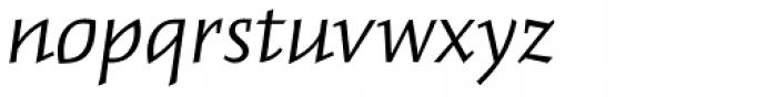Meleo Book Italic Font LOWERCASE