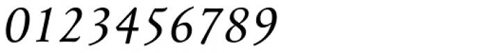 Mengelt Basel Antiqua Paneuropean Italic Font OTHER CHARS