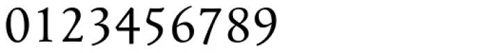 Mengelt Basel Antiqua Paneuropean Regular Font OTHER CHARS