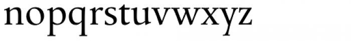 Mengelt Basel Antiqua Paneuropean Regular Font LOWERCASE