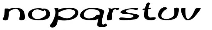 Merilee Extraexpanded Bold Italic Font LOWERCASE