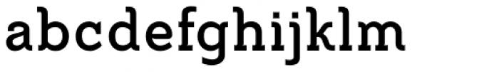 Metrolite Pro Bold Font LOWERCASE