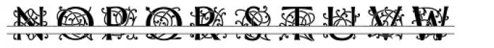 MFC Mercer Split Font UPPERCASE