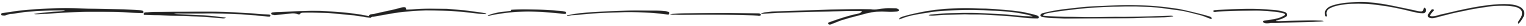 Mihawk Swash Mihawk Swash ttf (400) Font LOWERCASE