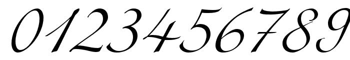Miama Nueva Font OTHER CHARS