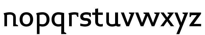 Midiet Serif Medium Font LOWERCASE