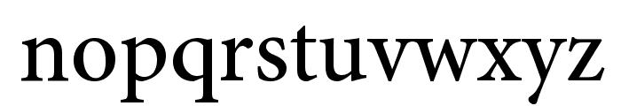 Mignon-Medium Font LOWERCASE