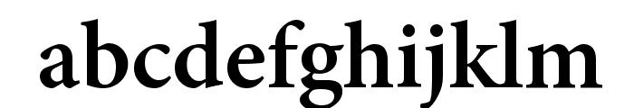 Mignon-Semibold Font LOWERCASE